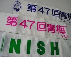 青梅マラソン-47回-1