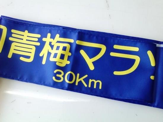 青梅国際マラソン30km